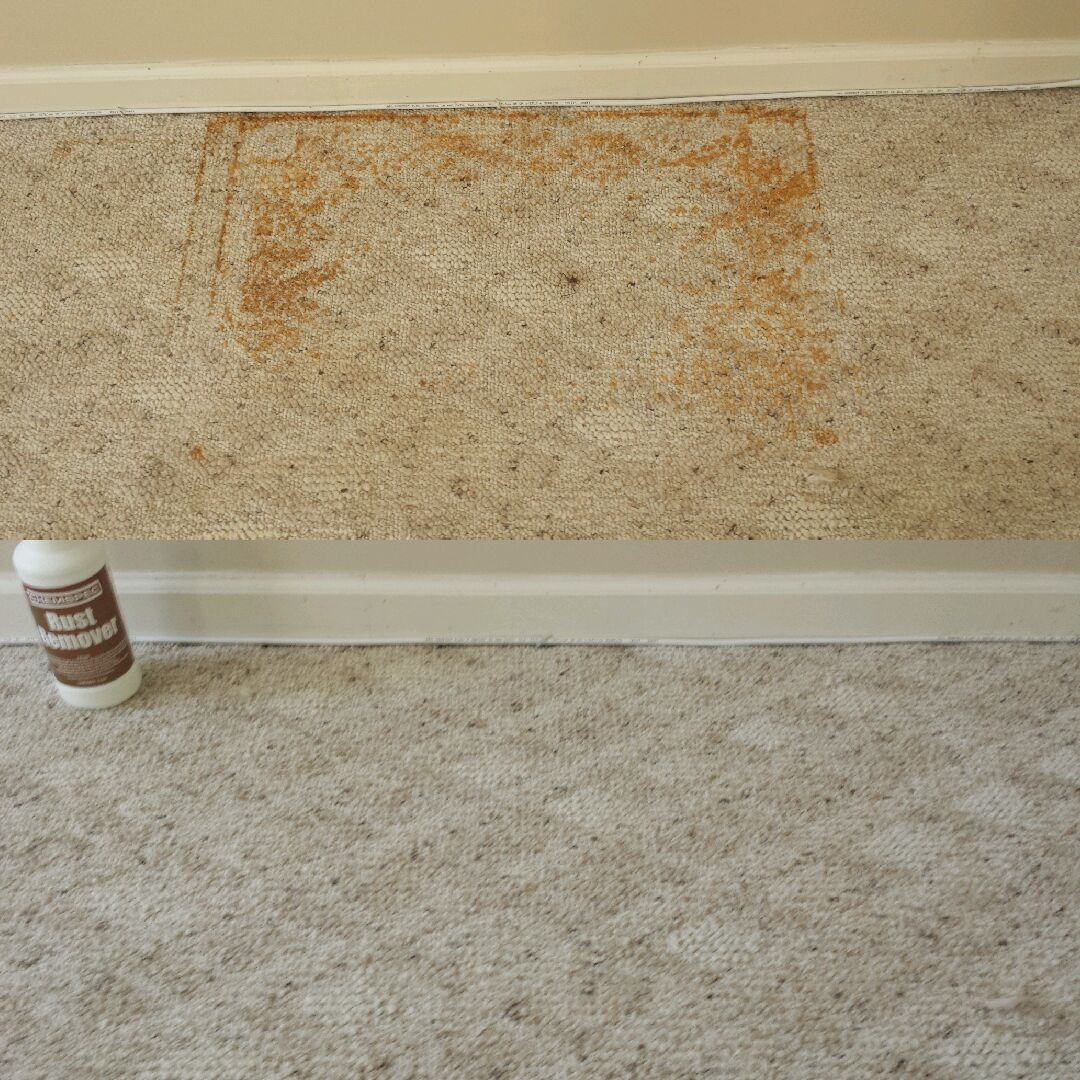 How To Clean Vomit Out Of Carpet With Pictures Wikihow ...