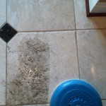Cleaning a Travertine kitchen floor in king george va