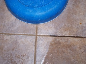 cleaning tile & grout floors