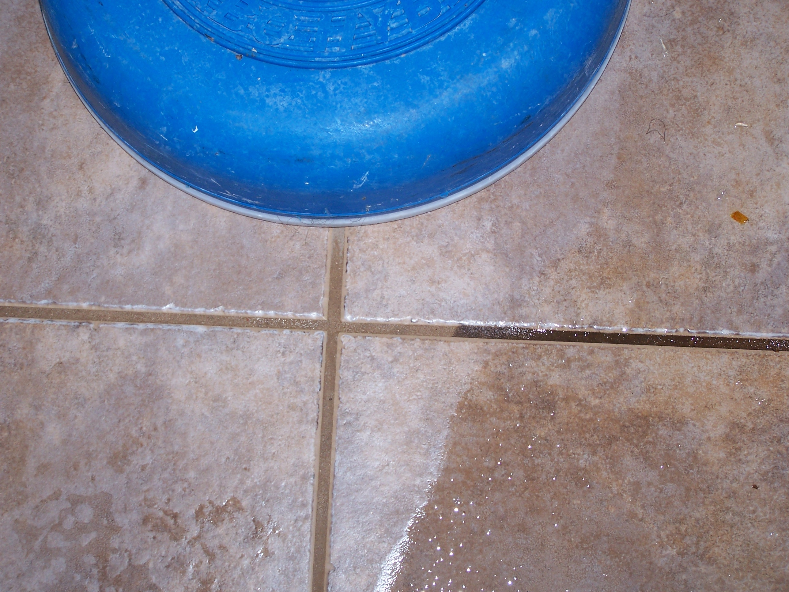 cleaning tile u0026 grout floors