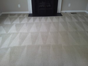 Family room carpet cleaning after shot