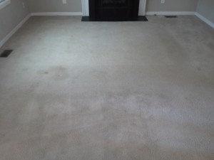 Family room carpet cleaning