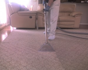 carpet cleaners stafford