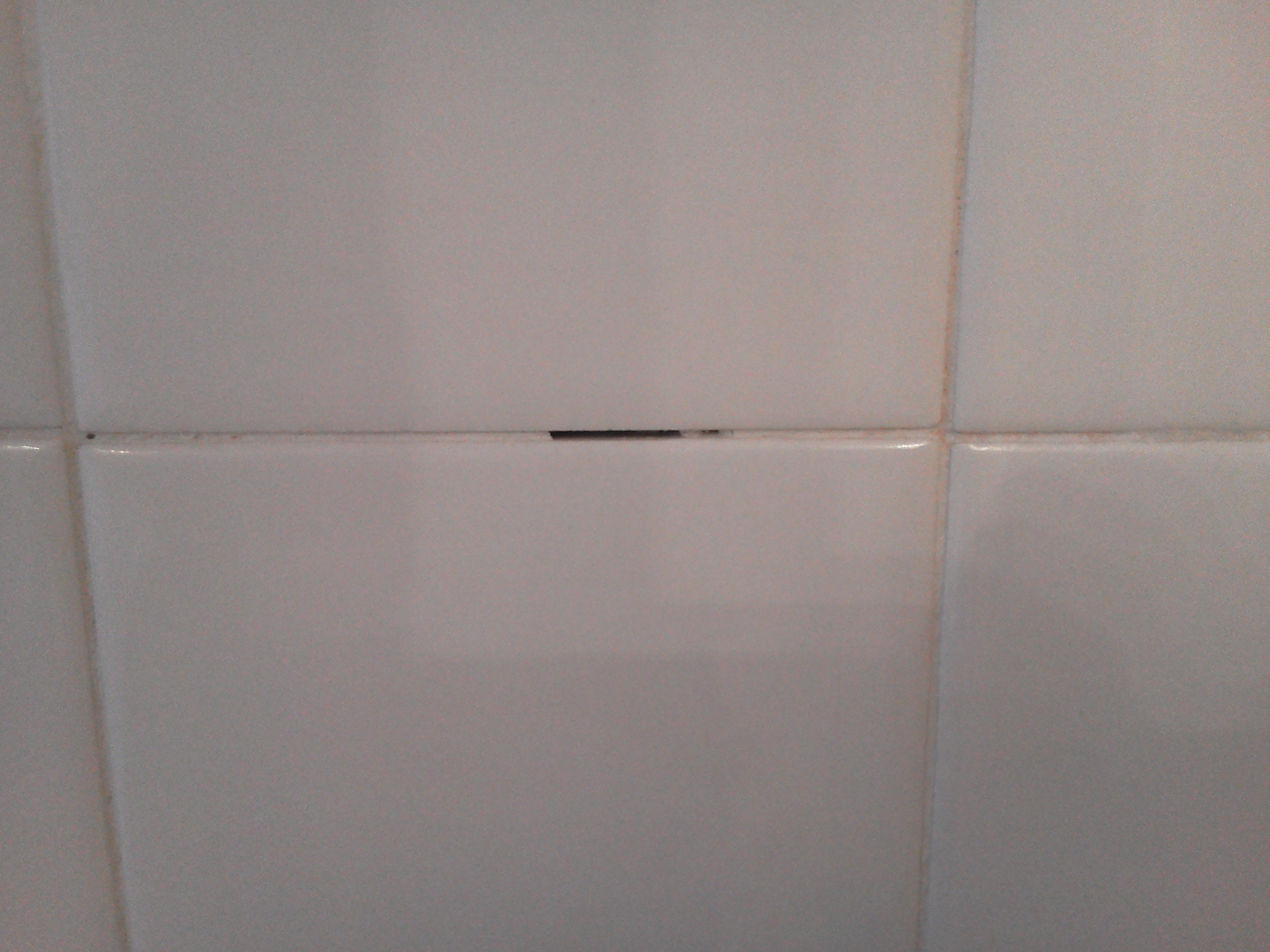 A minor shower repair could save thousands pristine tile missing grout dailygadgetfo Images