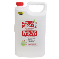 spotter and stain remover