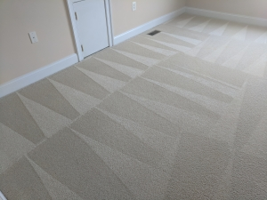Carpet Cleaning with Filter Soil Removal