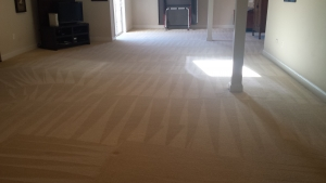 Fredericksburg Carpet Cleaning