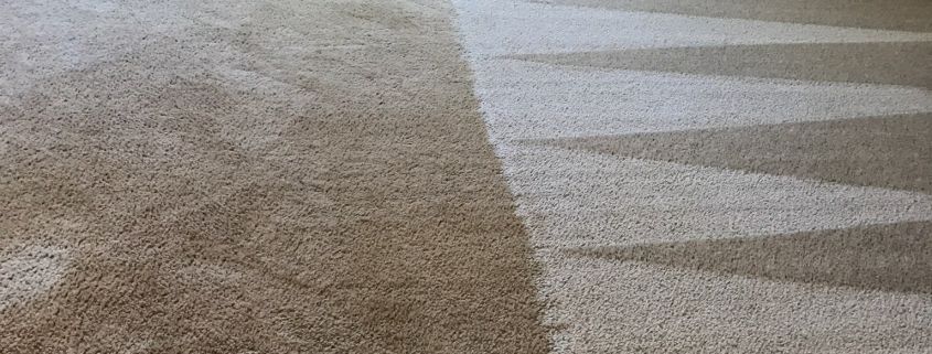 carpet cleaning cost