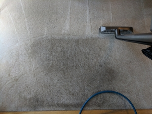 Traffic Lane Carpet Cleaning